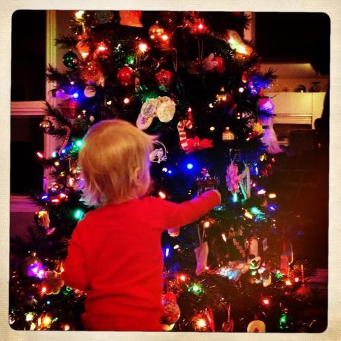 theo_tree