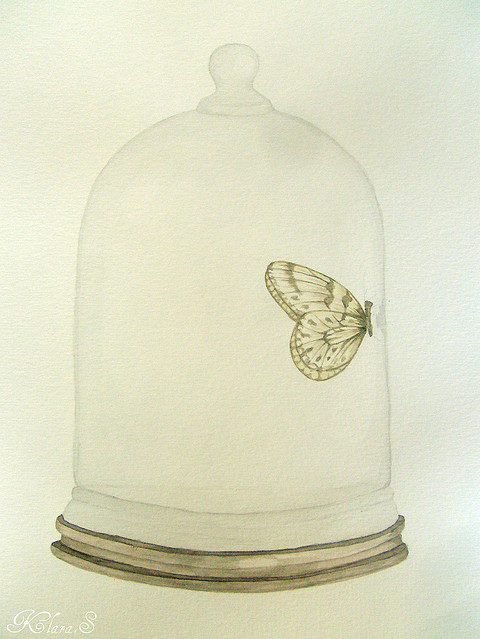 Bell Jar Drawing Art-bell-jar-butterfly-drawing