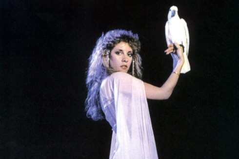 Witchy Woman and Fleetwood Mac star Stevie Nicks was crazy as a cockatoo in the 1980s - she's the poster child for saying no to drugs